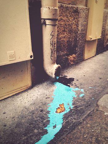 Street Art Streetphotography Fish Street Art/Graffiti