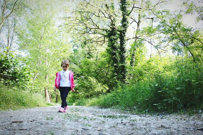 Tree Walking Girls One Person Day Nature Green Color Outdoors (null)Real People Childhood Lifestyles Forest Happiness Nature Photography Nature_collection Little Girl Princess Little Princess Way Lombardia Ticino TICINO ♡ Italy My Life