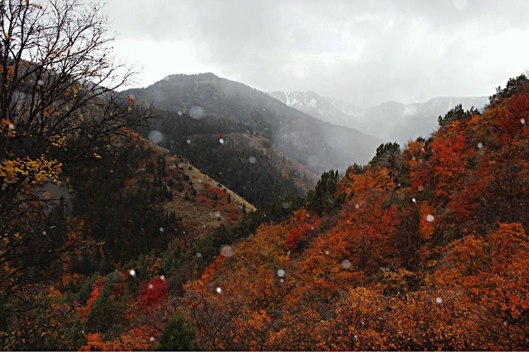 It snowed on us, while we were up in the mountains.