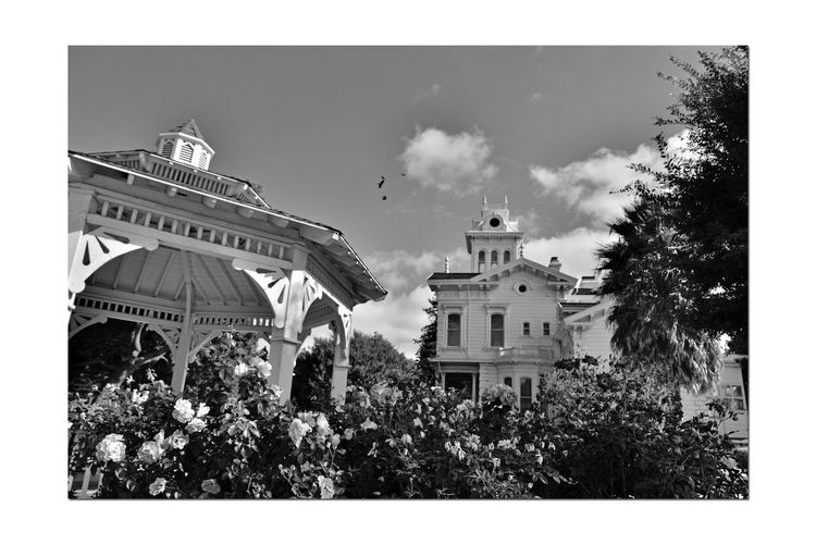 Meek Mansion 6 Cherryland,Ca. Historic Meek Mansion Gazebo Architecture Victorian Style: Second Empire, Italian Villa Built 1869 William Meek 10 Acre Estate Once 3,000 Acres Orchards: Cherry,apricots, Plums & Almonds Monochrome_Photography Monochrome Black & White Black & White Photography Black And White Black And White Collection  Hayward Area Recreation Dept. H.A.R.D Purchased 1964 National Register Of Historic Places 73000393 Hayward Area Historical Society Manages