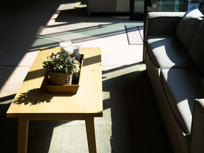 morning sunlight and shadow Sunlight Nature Shadow Plant Potted Plant Day Flower No People Seat Table Growth Sunny Flowering Plant Outdoors High Angle View Chair Furniture Window Wood - Material Minimal Minimalist Interior Design Living Room
