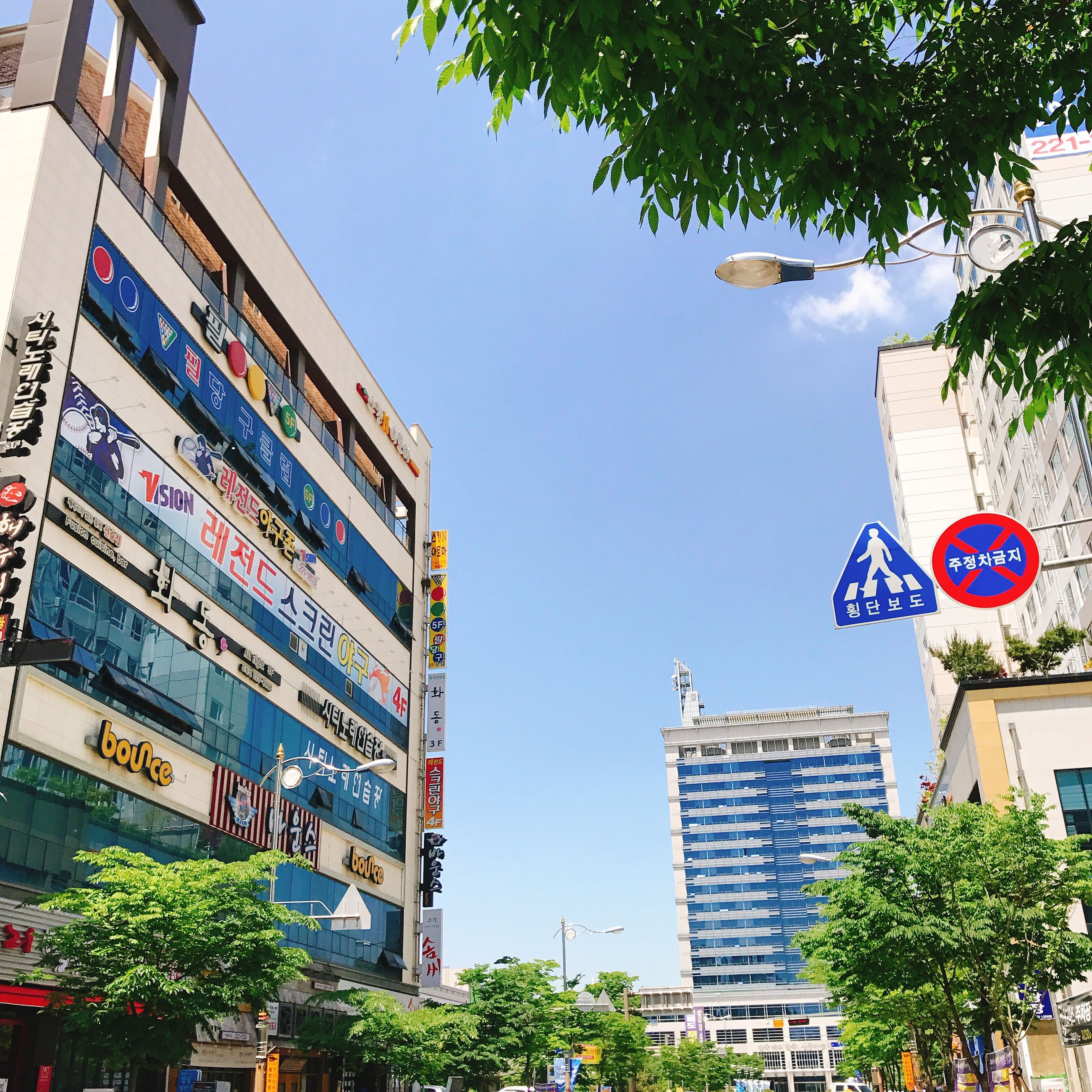 building exterior, architecture, tree, built structure, low angle view, text, outdoors, city, clear sky, day, communication, sky, flag, no people, road sign