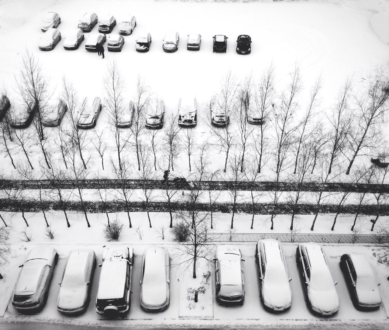 High angle view of snow covered parked cars and bare trees