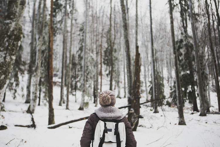 Rear view of person in forest during winter