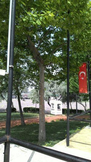 Turkiyem Bayragim Istanbul