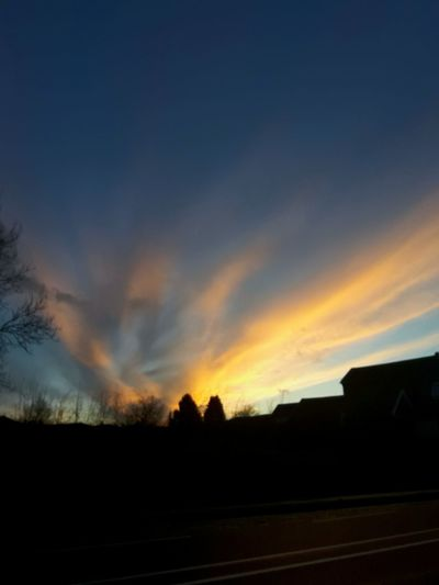 Dramatic Sky Sunset Multi Colored Tree Area Beauty In Nature Day Sky Awe Outdoors