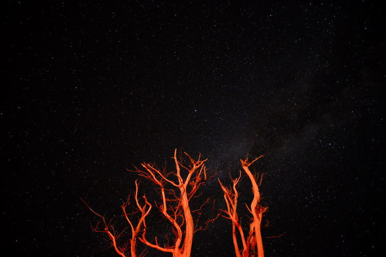 Low angle view of bonfire against star field at night