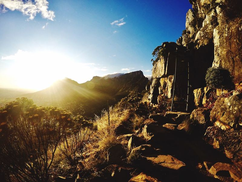 Lions Head Outdoors Adventure Landscape Hiking Table Mountain View Captown Lions Head South Africa Sun Sky Nature No People Mountain