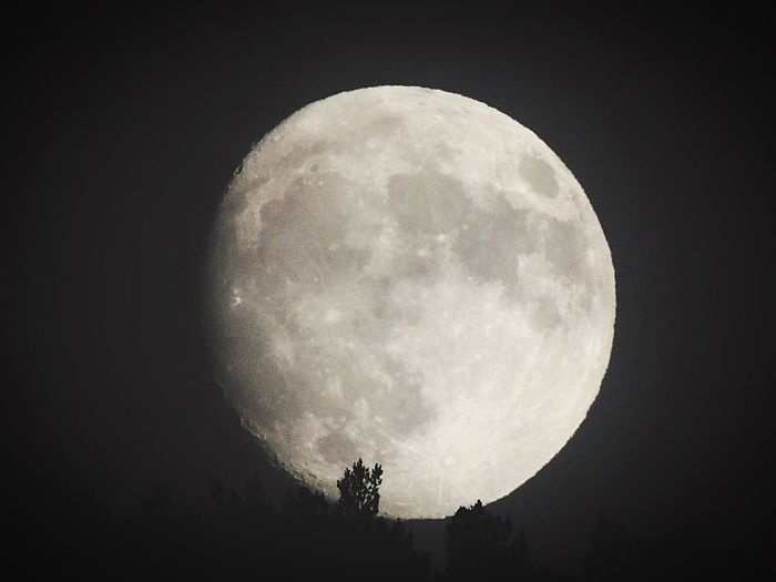 Moon Night Full Moon Moon Surface Astronomy Nature Beauty In Nature Planetary Moon Sky Tranquility No People Outdoors Silhouette Scenics Half Moon Space