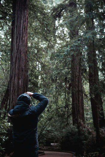 Adult Adults Only Beauty In Nature Day Forest Leisure Activity Men Nature One Man Only One Person Only Men Outdoors People Real People Rear View Standing Tree Tree Trunk