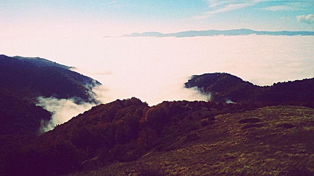Sea Seasky Nature Sky Fog Foggy Day