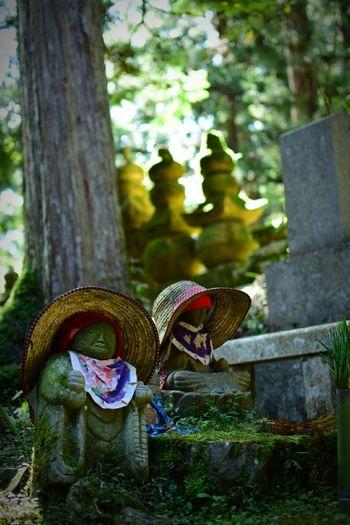 Koyasan Japan Wakayama Relaxing Jizou 高野山 笠地蔵