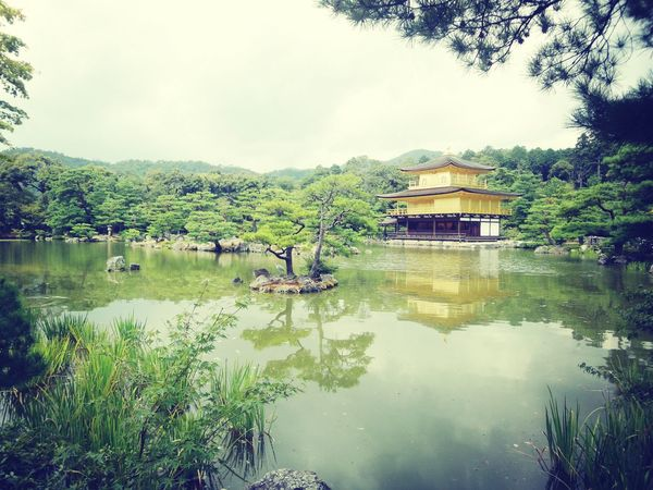 At 鹿苑寺(金閣寺) Kinkaku-ji Temple Kyoto Journey
