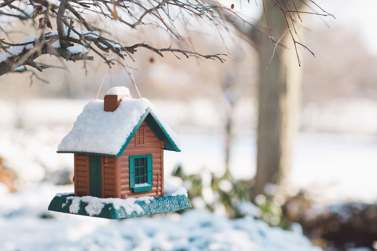 Feeding birdhouse covered by snow during winter
