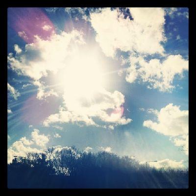 What a beautiful day after so much rain 100happydays Dayfour Sunshine Rain blueskies clouds lush