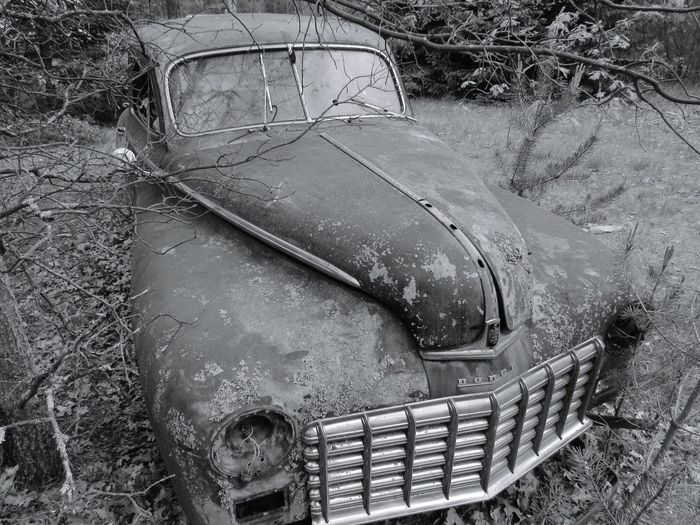Found this car going through the woods was really sad but beautiful. Forgotten Taking Photos Check This Out Nature_collection EyeEm Best Edits EyeEm Best Shots Escaping A Walk In The Woods EyeEm Best Shots - Black + White Vintage Cars