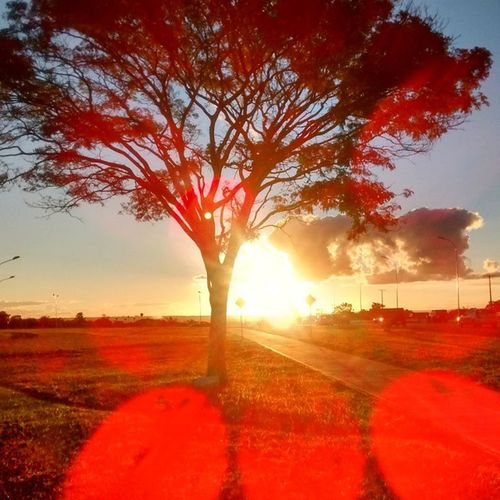 Fim de tarde e um passeio de bike. Deus é maravilhosa na sua criação. Dedico ao meu amor @giselepirescn... Bike Sunset Sun Flares Fimdetarde Deusemtodolugar Nofilter Semfiltro