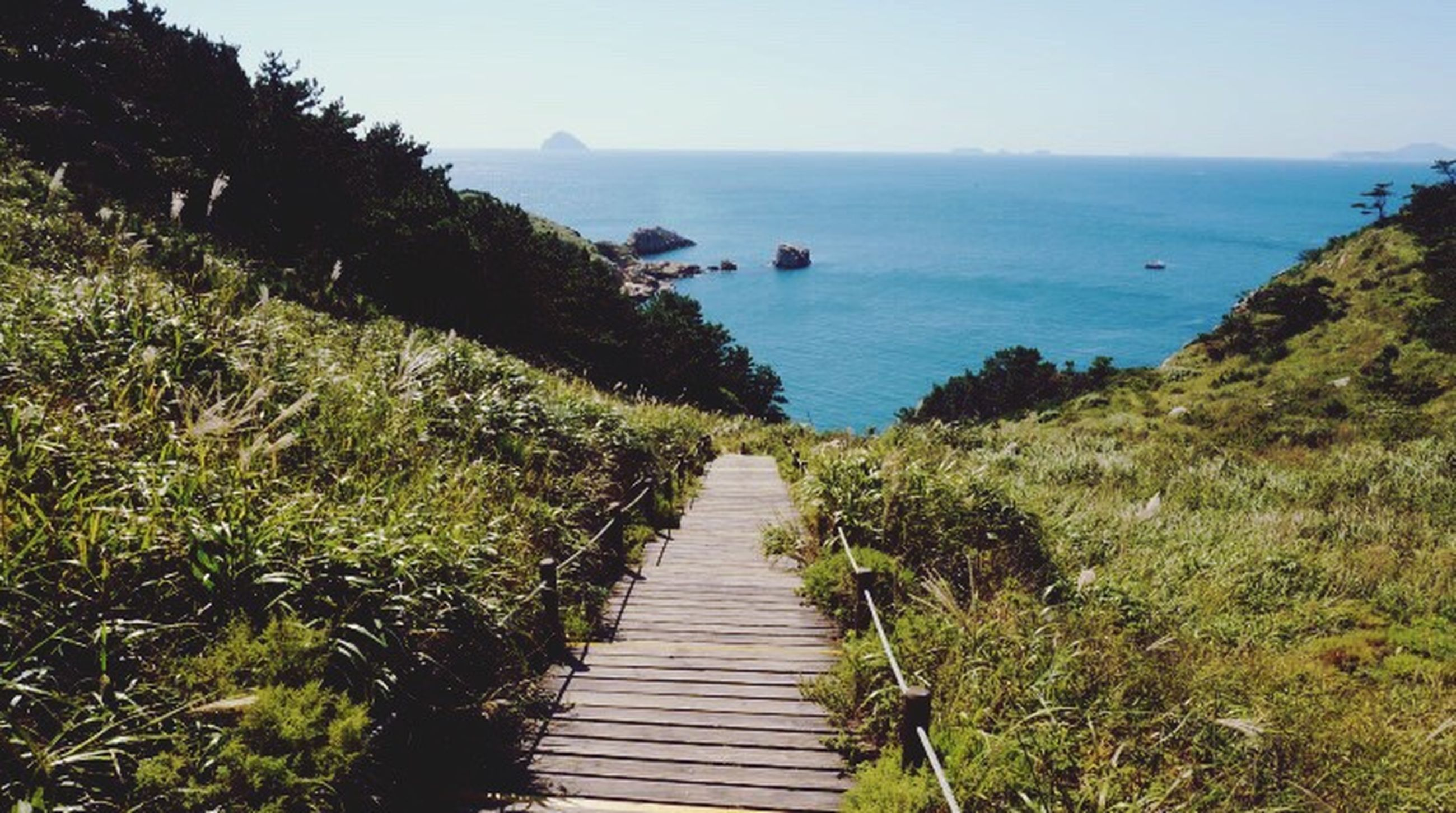 sea, nature, water, scenics, horizon over water, beach, outdoors, beauty in nature, the way forward, boardwalk, tranquility, tranquil scene, day, no people, sky