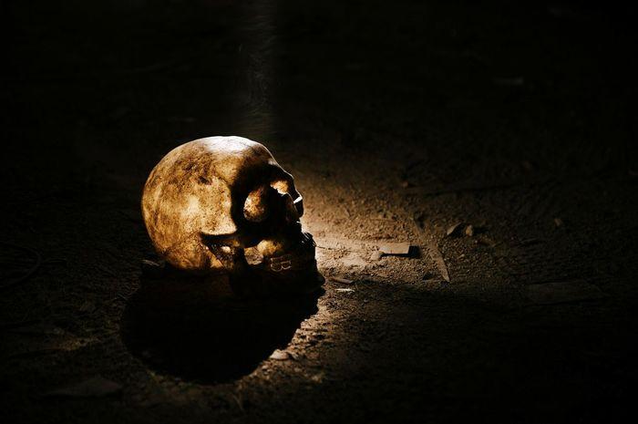 43 Golden Moments Looufen Skull Skull Mask Dashavolkova Saint-Petersburg EyeEm Followme Follow Like HUAWEI Photo Award: After Dark