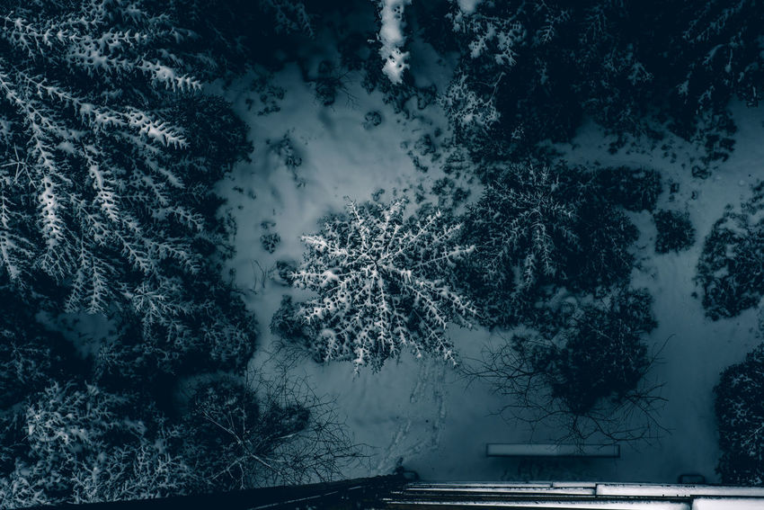 Aerial Architecture Beauty In Nature Branch Cold Temperature Day Nature No People Outdoors Scenics Sky Snow Tree Water Weather Winter