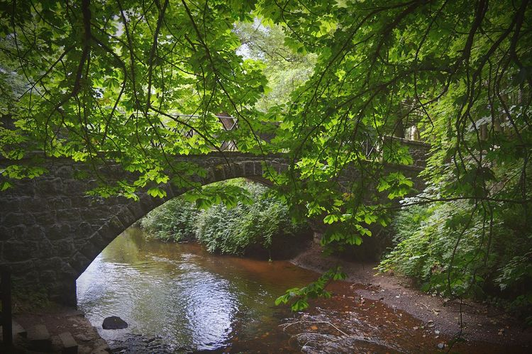 Old Bridge Walking Around Country Life Scottish By The River The Great Outdoors - 2015 EyeEm Awards