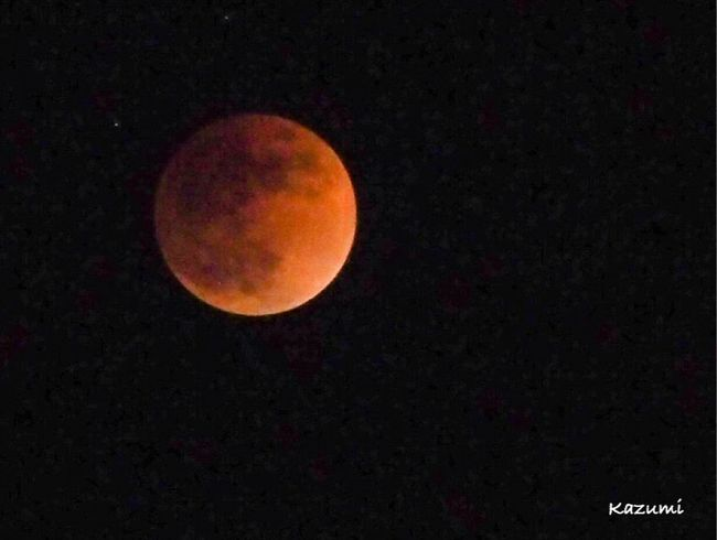 Blood Moon Total Lunar Eclipse 皆既月食 Blood Moon 2018 Blood Moon Astronomy Moon Eclipse Night Circle Beauty In Nature Nature No People Outdoors Scenics Tranquil Scene Low Angle View Tranquility Moon Surface Sky Space