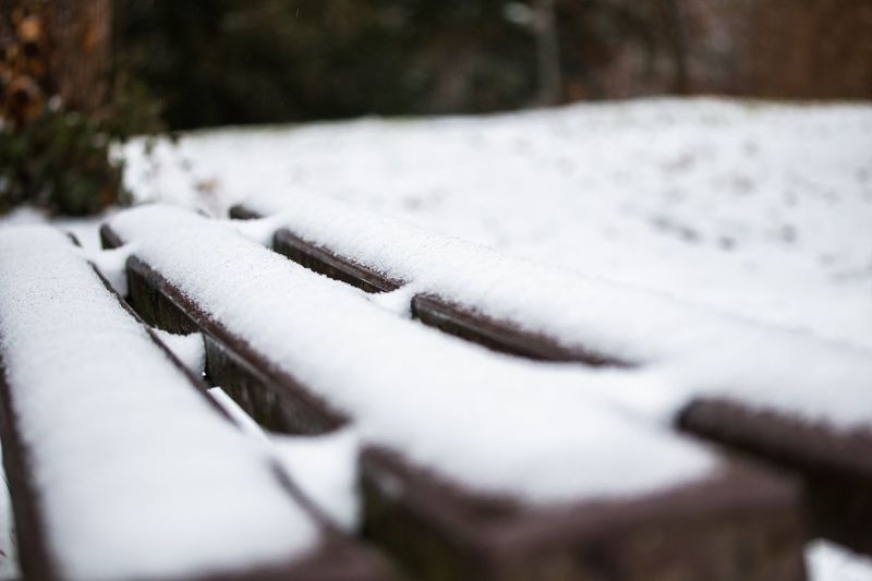 #winter #snow #cold #takeaseat #park #freezing