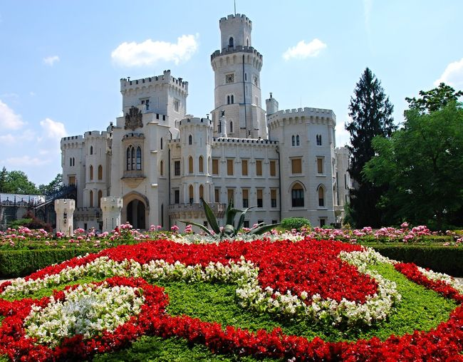 Hluboka nad Vltavou castle with garden and flowers in foreground. Ancient Bohemian Castle Czech Republic Hluboká Nad Vltavou Architecture Building Exterior Built Structure Day Flower Flowerbed Foreground Fragility Garden Growth Nature No People Outdoors Plant Red Rose - Flower Sky