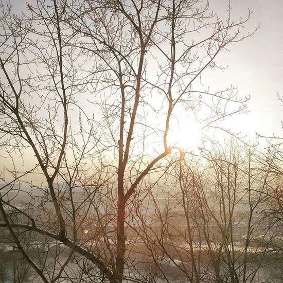 золотоеутро омск сибирь аизнашегоокна Морозисолнце новыйгод рождество Goldenmorning Frostandsun Omsk Siberia Fromourwindow NewYear Christmas