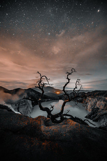 Driftwood on land against sky at night
