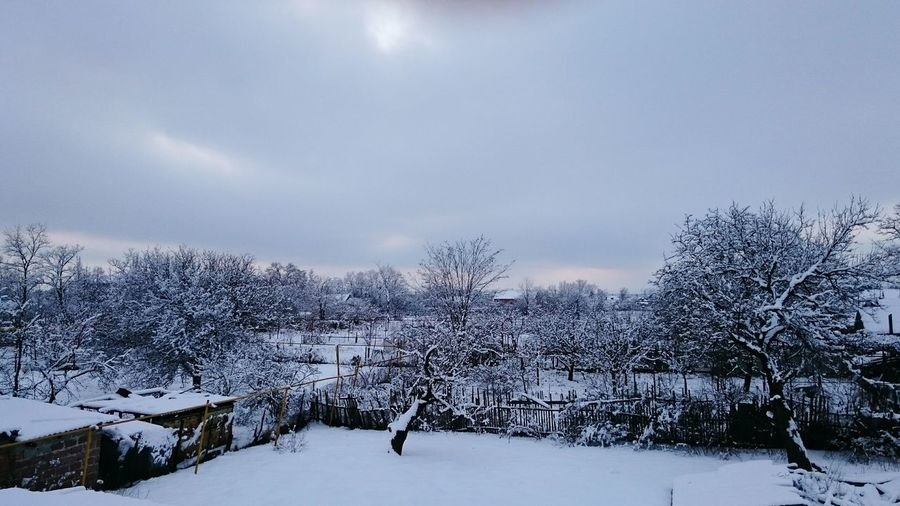 Зимняя сказка❄⛄❄ Hi! First Eyeem Photo
