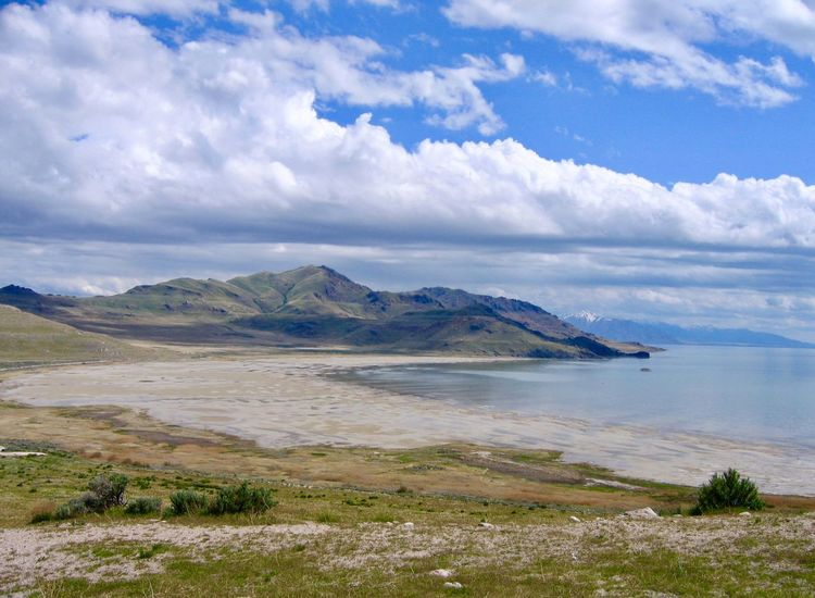 Shoreline view of landscape at Great Salt Lake near Salt Lake City, Utah Utah Lake View Travel Travel Destinations Great Salt Lake Cloud - Sky Scenics Sky Nature Beauty In Nature Tranquil Scene Tranquility Water Outdoors Landscape Day No People Beach Grass Horizon Over Water Mountain