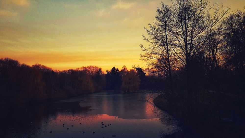 I did it my way.... Werne A.d. Lippe Frozen Nature Cold Winter Evening Sky My Edit New Edit Sunset Reflection Sky Tree Water Silhouette No People Nature Beauty In Nature Cloud - Sky Scenics Lake Outdoors Tranquil Scene Tranquility Colour Your Horizn The Great Outdoors - 2018 EyeEm Awards
