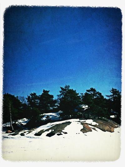 Icewalk3