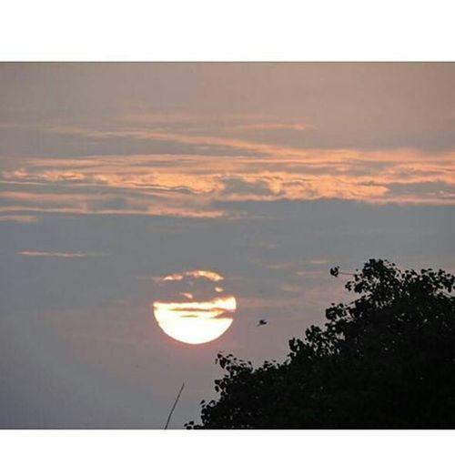 Photography Sundowner Beuatiful Nutureaddictsun Nutureofgod Bird Incrediblegujarat Incredibleindia Nikontop