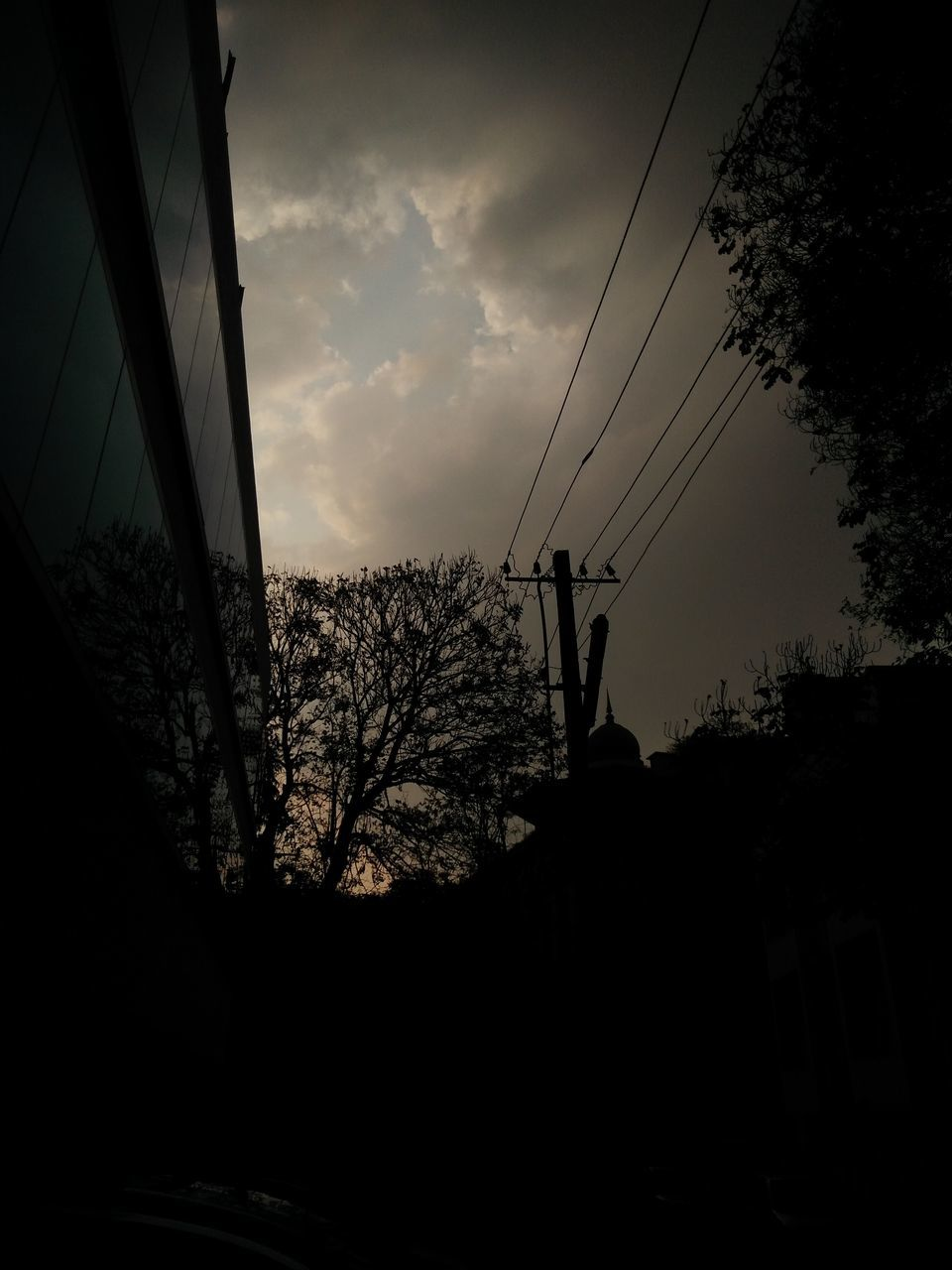 cable, silhouette, tree, connection, sky, power line, nature, electricity pylon, sunset, low angle view, electricity, outdoors, no people, architecture, beauty in nature, day