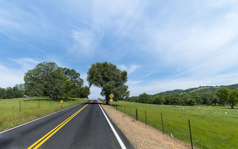 On the Road Beauty In Nature Cloud - Sky Day Green Color Landscape Nature No People Outdoors Road Scenics Sky The Way Forward Tranquil Scene Tranquility Transportation Tree