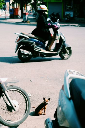 Woman riding motor scooter on road
