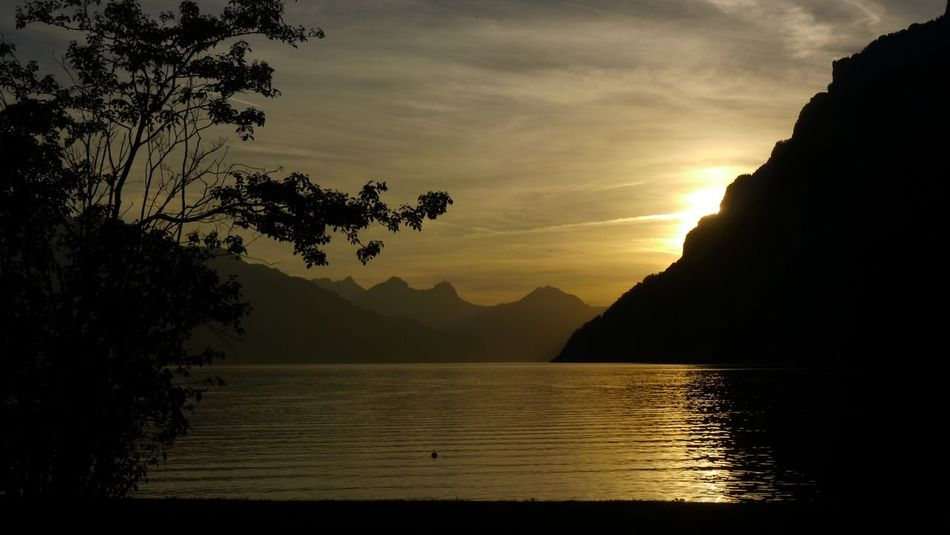 Beauty In Nature Water Nature Mountain Sunset Scenics Sky Tranquil Scene Tranquility Silhouette Reflection Idyllic Tree Sea No People Mountain Range Outdoors Landscape Day Switzerland Walensee Walenstadt Lake Summer Miss