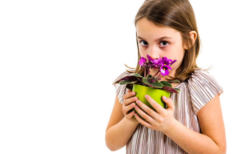 Sad young little girl holding flower pot mourning family loss. Child grieving over losing loved ones. Girl is looking at the flower pot, with sad face, crying. Profile view, studio shot, isolated on white background. Indoors  One Person Girl Child Little Children Dress Hair Flower Flower Head Potted Plant Pot Portrait Viola Viola Flowers Violet Violet Flowers Plant Violaceae Looking Holding Green Smelling Smelling The Flowers Expression Emotion Face White White Background Isolated Emotions Hands Studio Shot Lifestyles Freshness Girls Woman Purple Fresh Flowering Plant Women Mourning Loss Family Death Funeral Losing Sad Sadness Crying
