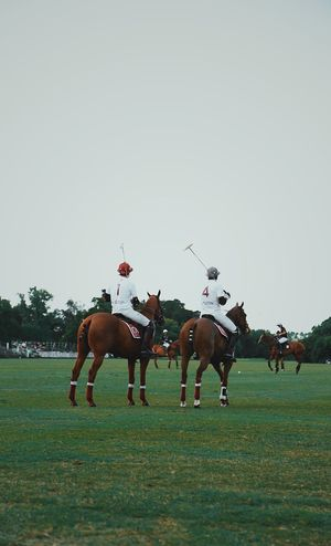 Livestock Domestic Animals Mammal Domestic Animal Themes Animal Horse Animal Wildlife Group Of Animals Pets Horseback Riding Vertebrate Sky Sport Group Of People Competition Real People Horse Racing Activity Field Medium Group Of Animals Riding Outdoors Herbivorous