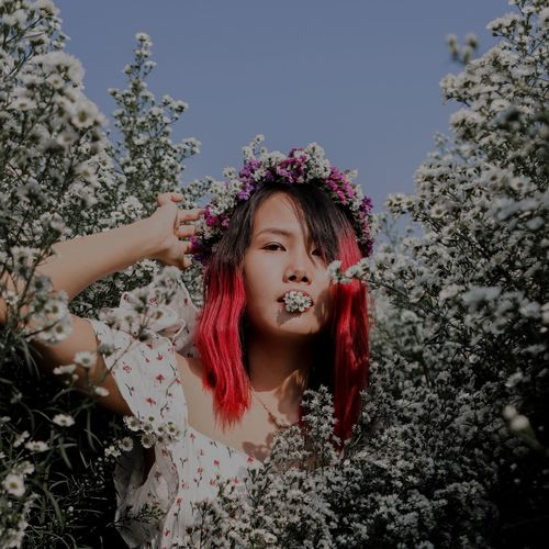 Portrait of beautiful woman standing by flowering plants against clear sky
