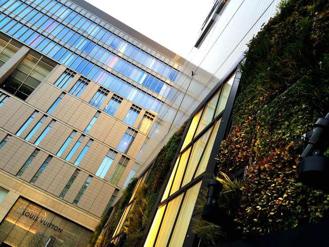 STLSQA Cityscapes Architecture Let's Do It Chic! EyeEm Meetup Fukuoka