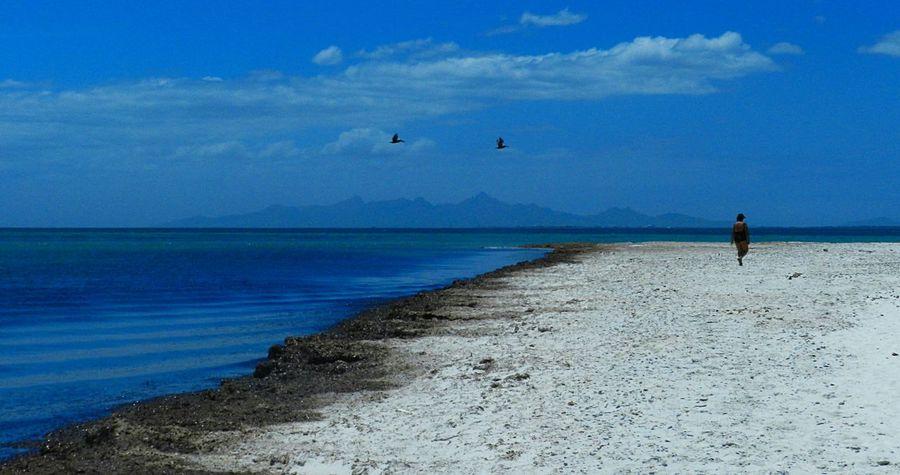 Isla de coche, 2014 Sea And Sky Venezuela_captures Venezuelaforum Margarita, Venezuela Venezuelamovilfoto Beachphotography Island Blue Sky Caribbean Sea
