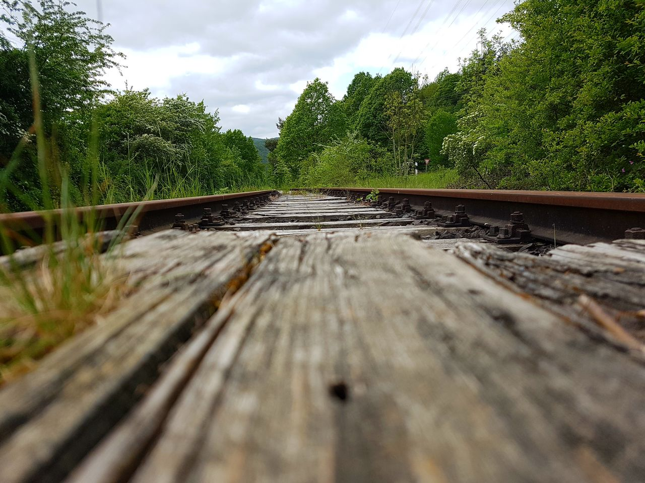 rail transportation, railroad track, tree, surface level, transportation, no people, sky, selective focus, day, wood - material, nature, cloud - sky, outdoors, growth