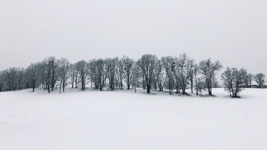 Snow day Snow Cold Temperature Winter Tree Plant Sky Field Beauty In Nature Land White Color Nature Landscape Tranquility Scenics - Nature Covering Environment No People Day Tranquil Scene Outdoors