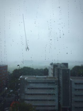 Autumn has arrived... Rain Rainy Days Rainy Raindrops Window Buildings Bad Weather Out Of The Window