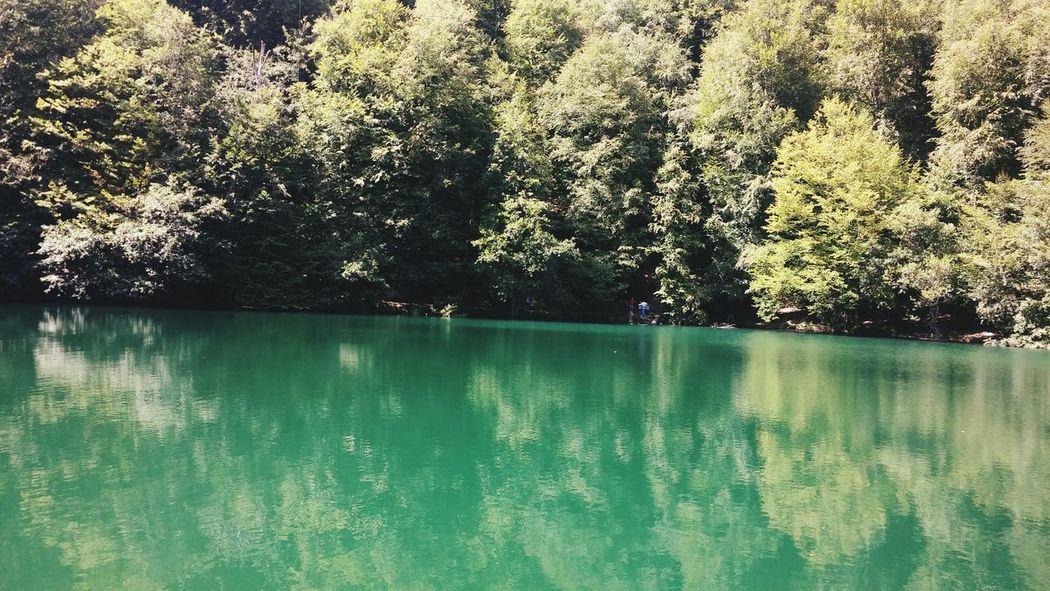 Yedigoller Millipark Bolu  Doğa Travel