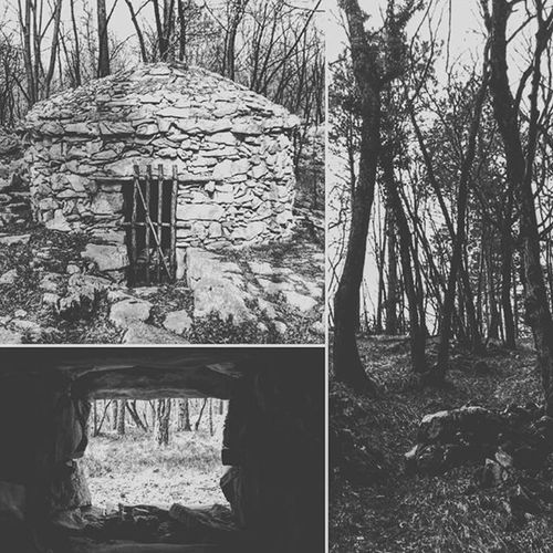 Nature Trieste Kras Wood Tree Meadow Forest Lodge Stones Scary Horror Killer Blairwitchproject Mistery Fear