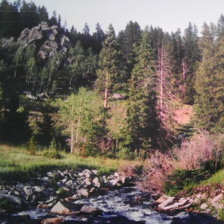 Instawater Instarocks Instatrees Instahugeboulders instahiking instarockclimbing instafun camping BigHornMountauns Wyoming instalife